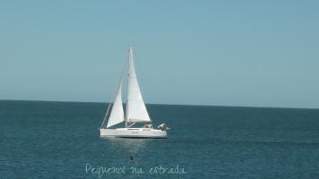 Punta del leste (4)