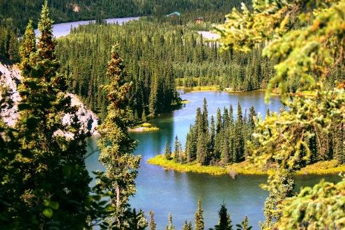 Denali Lago